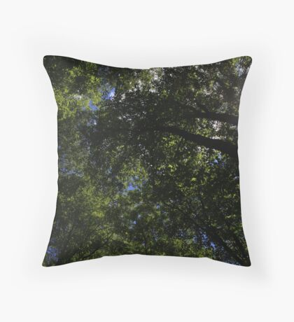 Spritual Cleansing Throw Pillow
