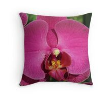 Outdoor Orchid Throw Pillow