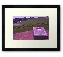 Site of the Woodstock Music Festival - August 15,16,17, 1969 Framed Print