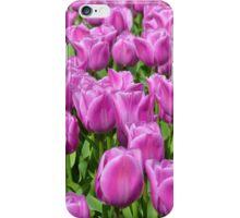 Purple Tulips iPhone Case/Skin
