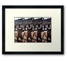 Lomo Cat Framed Print