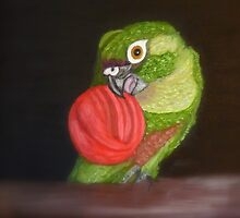 Echo Painting - Maroon-Bellied Conure - CHC by AndreaEL