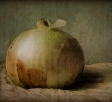 Onion on Antique Cloth by Jing3011