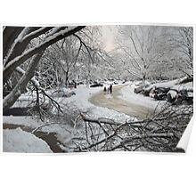 Snowstorm - Burke, Virginia Poster