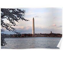 Cherry Blossoms and Tidal Basin Washington, DC Poster