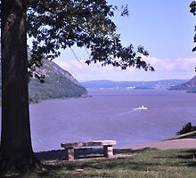 Hudson River from West Point by michael6076