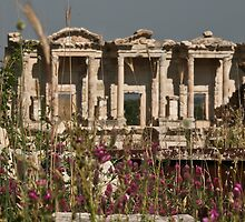 The Library At Ephesus by phil decocco