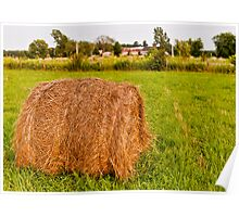 Hay-bale  Poster