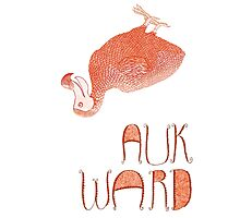 Awkward Orange Auk  Photographic Print