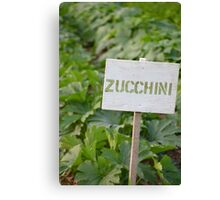 Zucchini - Eagle Heights Community Garden Canvas Print