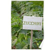 Zucchini - Eagle Heights Community Garden Poster