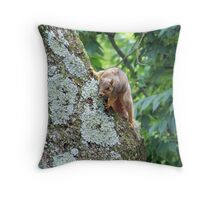 Is that a picnic that I smell? Throw Pillow