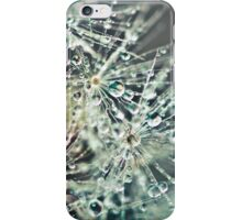 Dewdrop on Dandelion  iPhone Case/Skin