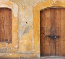 The Doors of San Juan by Amanda Yetman