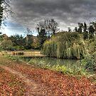 Abingdon Abbey Gardens by Rich Fletcher
