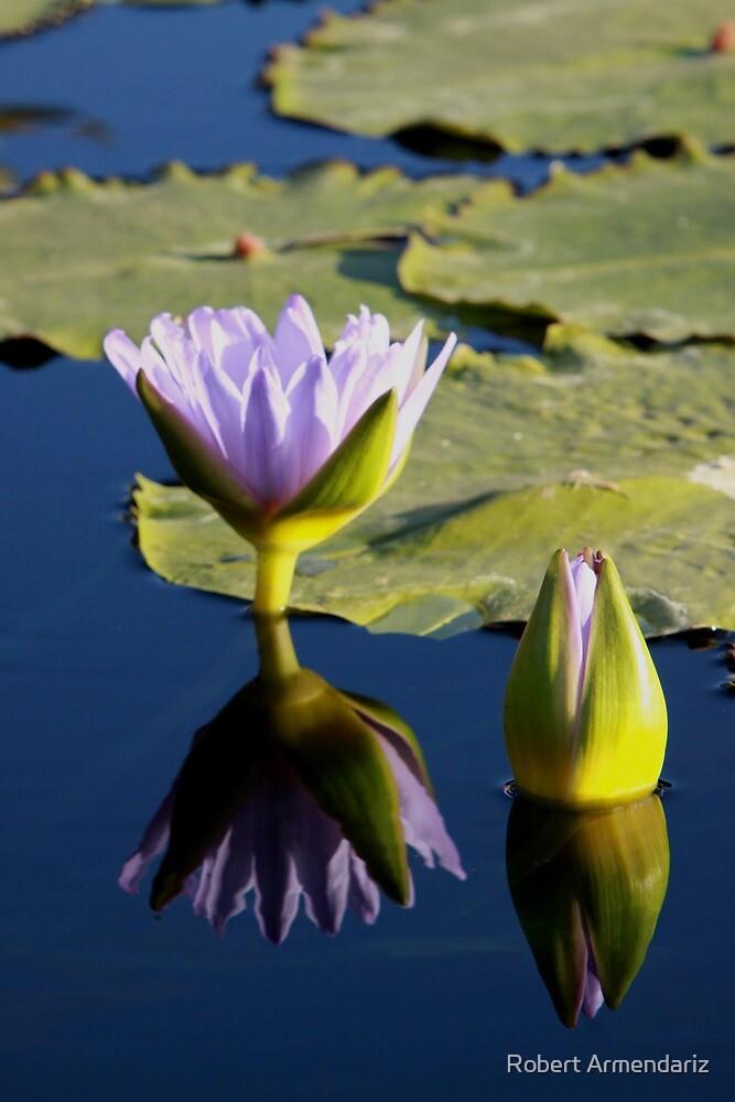 Smooth Reflection by Robert Armendariz