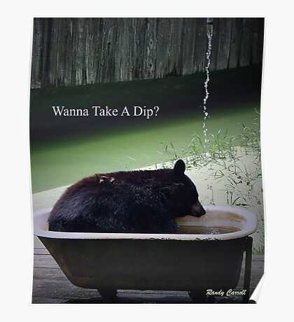 Wanna Take A Dip? Poster