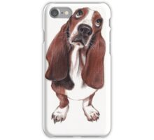 Beautiful Basset Hound Looking for a Forever Home iPhone Case/Skin
