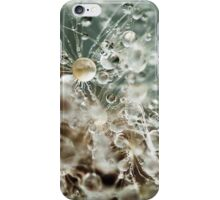 Dewdrop on Dandelion - 2 iPhone Case/Skin