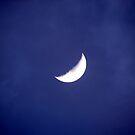 Crescent by Shiju Sugunan