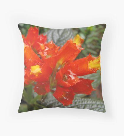 Dew filled flower Throw Pillow