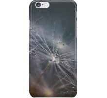 Dandelion Macro - 2 iPhone Case/Skin
