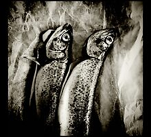 his and hers by scott hamilton
