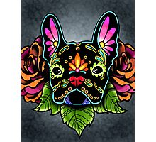 Day of the Dead French Bulldog in Black Sugar Skull Dog Photographic Print