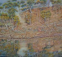 Coblinine river reflections - Dumbleyung by scallyart
