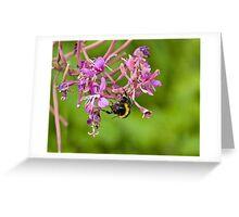 Acrobatic Bee Greeting Card