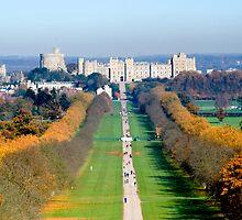 Long Walk Windsor Castle  by Jim Hellier