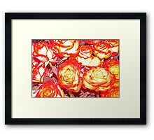 Roses at Eastern Market Framed Print