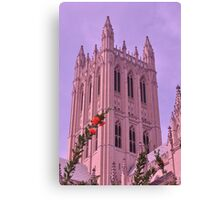 Spring at National Cathedral Canvas Print