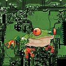 || electro_frog || by NaRKoS