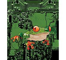    electro_frog    Photographic Print