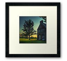 The Gingko Tree Framed Print