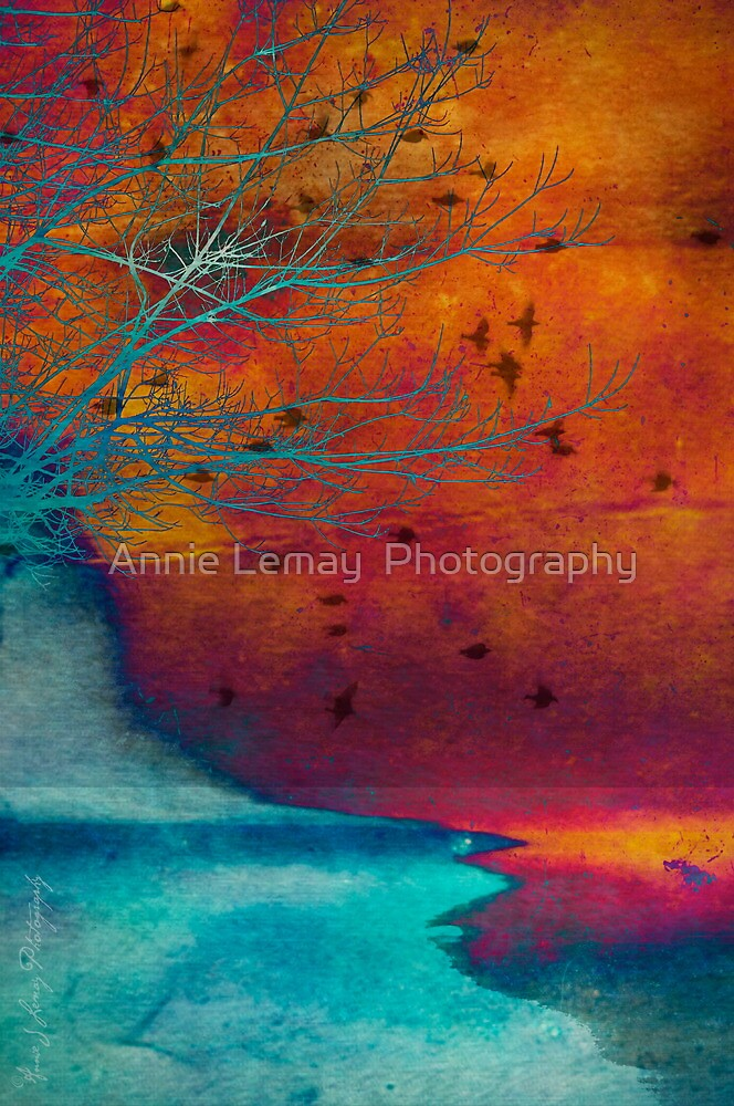 Into the Shore by Annie Lemay  Photography