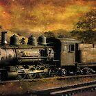 V & T Railroad  by pat gamwell