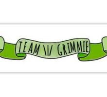 Team Grimmie Green Banner Sticker