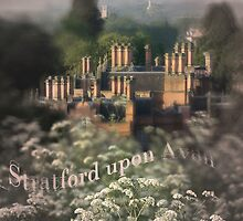Stratford upon Avon, From the Welcombe Bank by Gethin Thomas