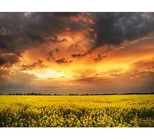 The luminous landscape pt.6. Photographic Print