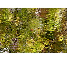 I Am A Leaf On The Water Photographic Print