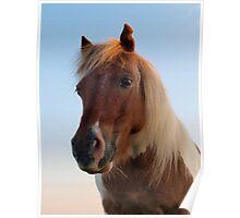 Moorland Pony Poster