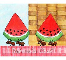 Watermelon Crawl Photographic Print