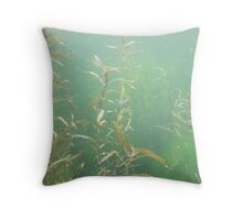 Descending Weed Basin Throw Pillow