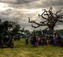 Powderham vintage rally by Rob Hawkins