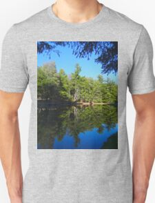 Reflections of a beautiful day Unisex T-Shirt