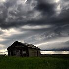 Irricana Storm Shack by EchoNorth