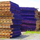 Purple by Schuyler L