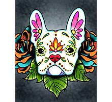 Day of the Dead French Bulldog in White Sugar Skull Dog Photographic Print
